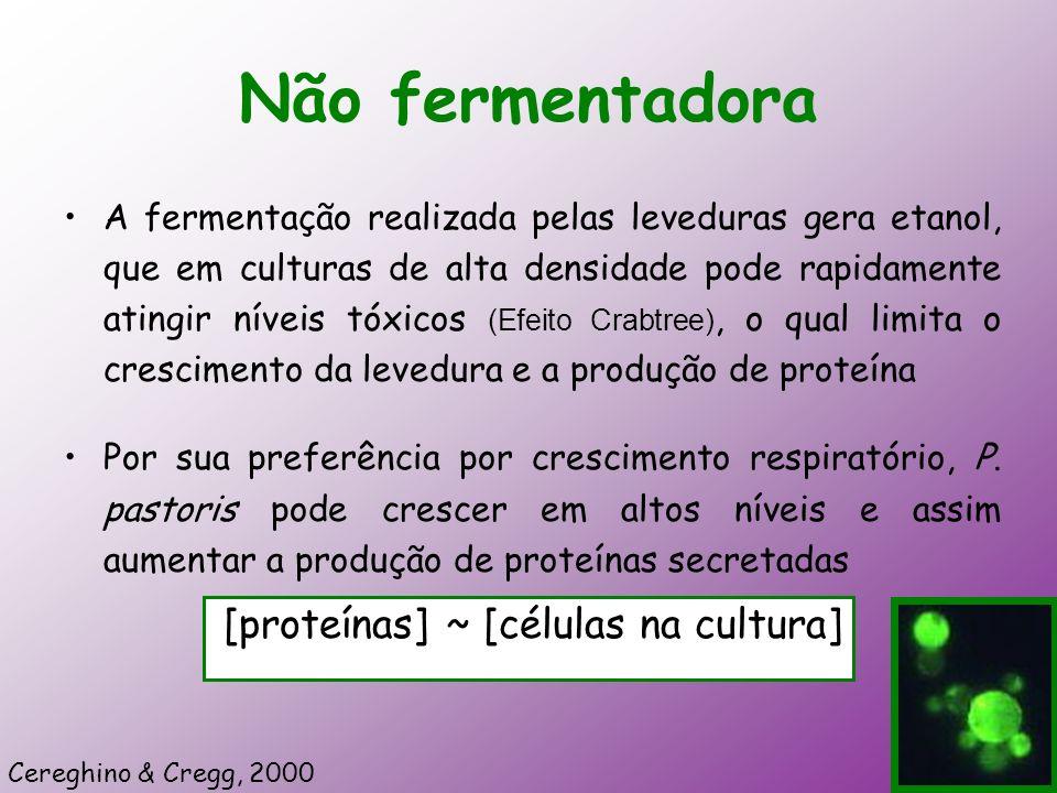 Não fermentadora [proteínas] ~ [células na cultura]